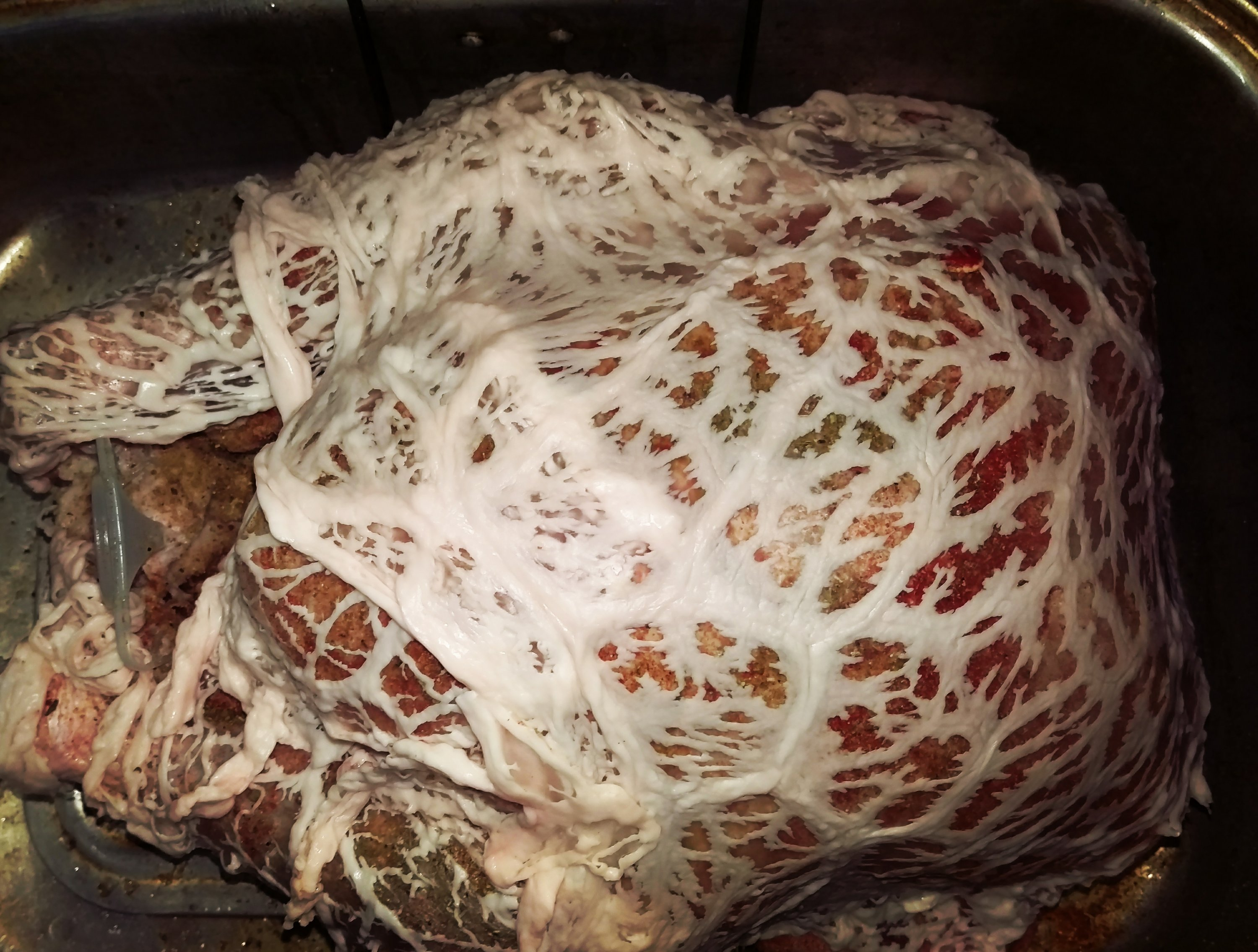 Thanksgiving Turkey in Caul Fat
